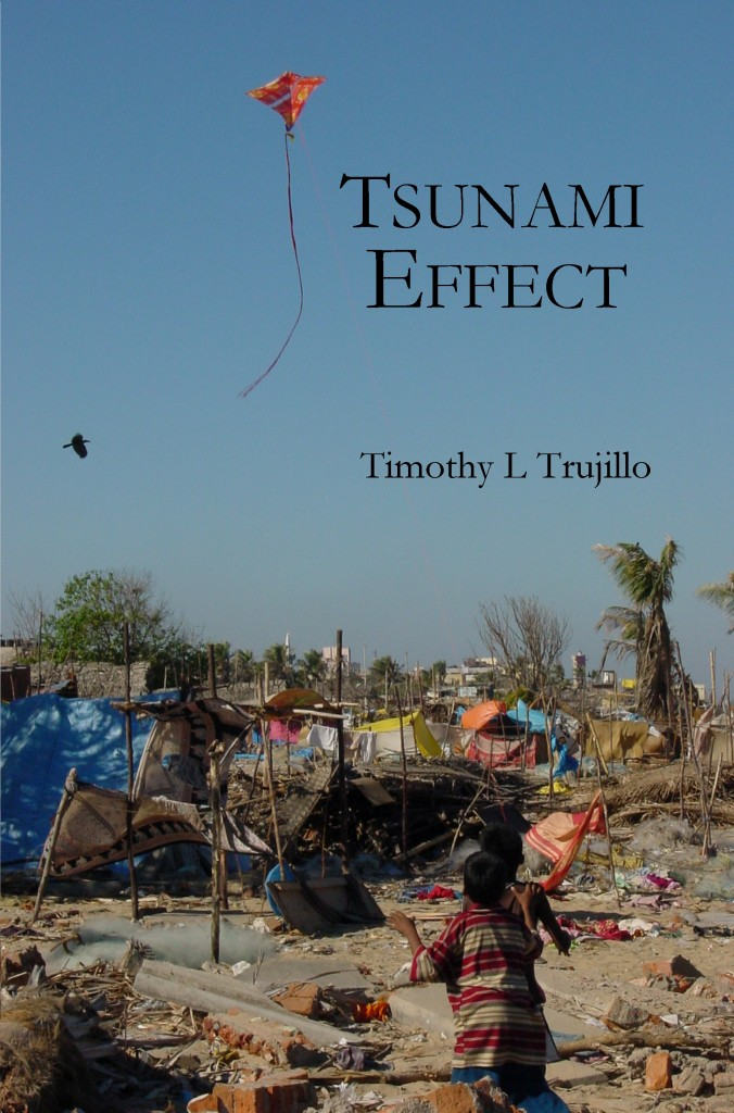 Tsunami Effect Cover